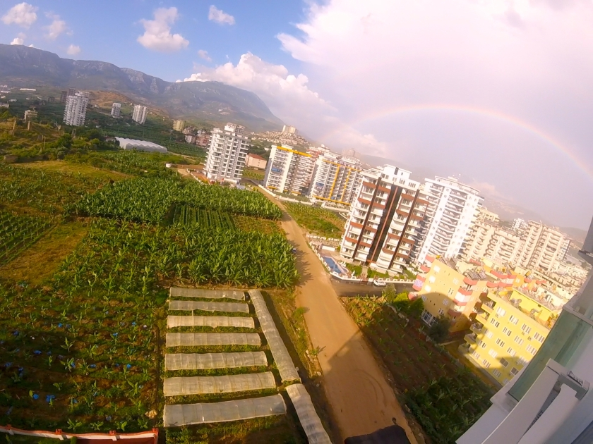 gold city rainbow
